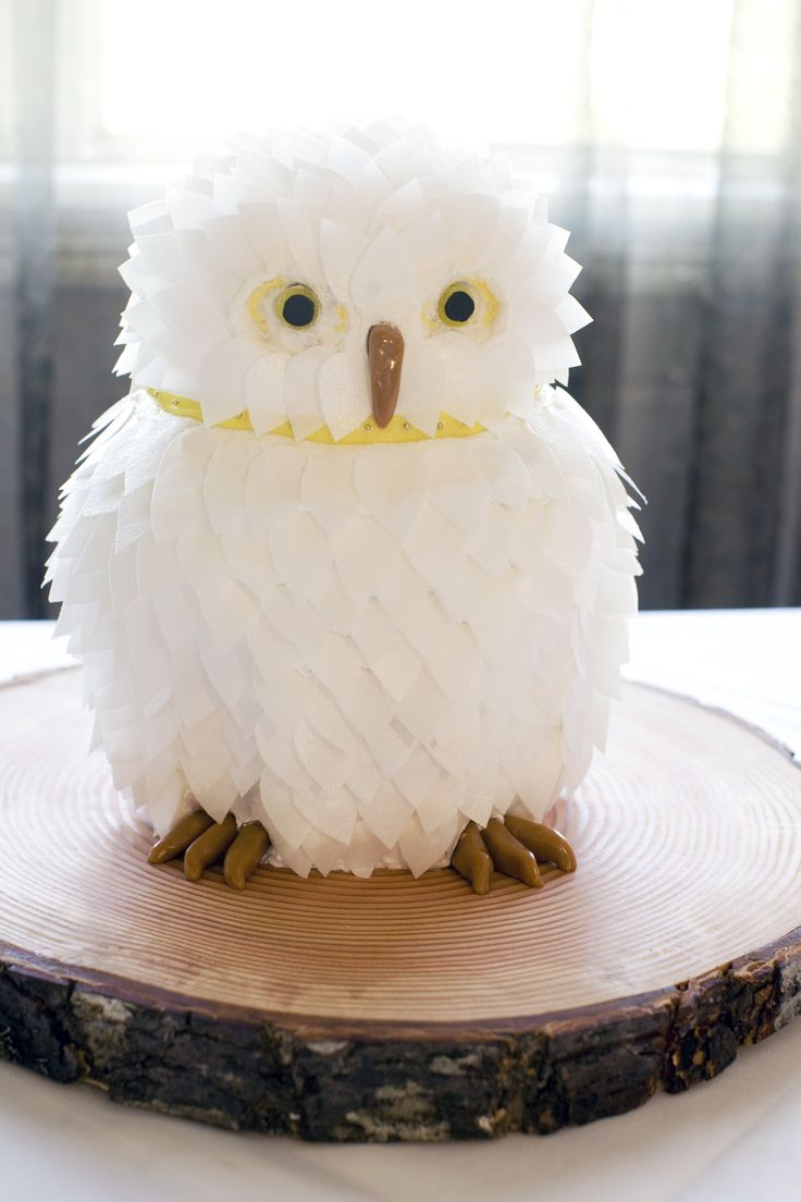 Image Result For Owl Birthday Cakes For Sale